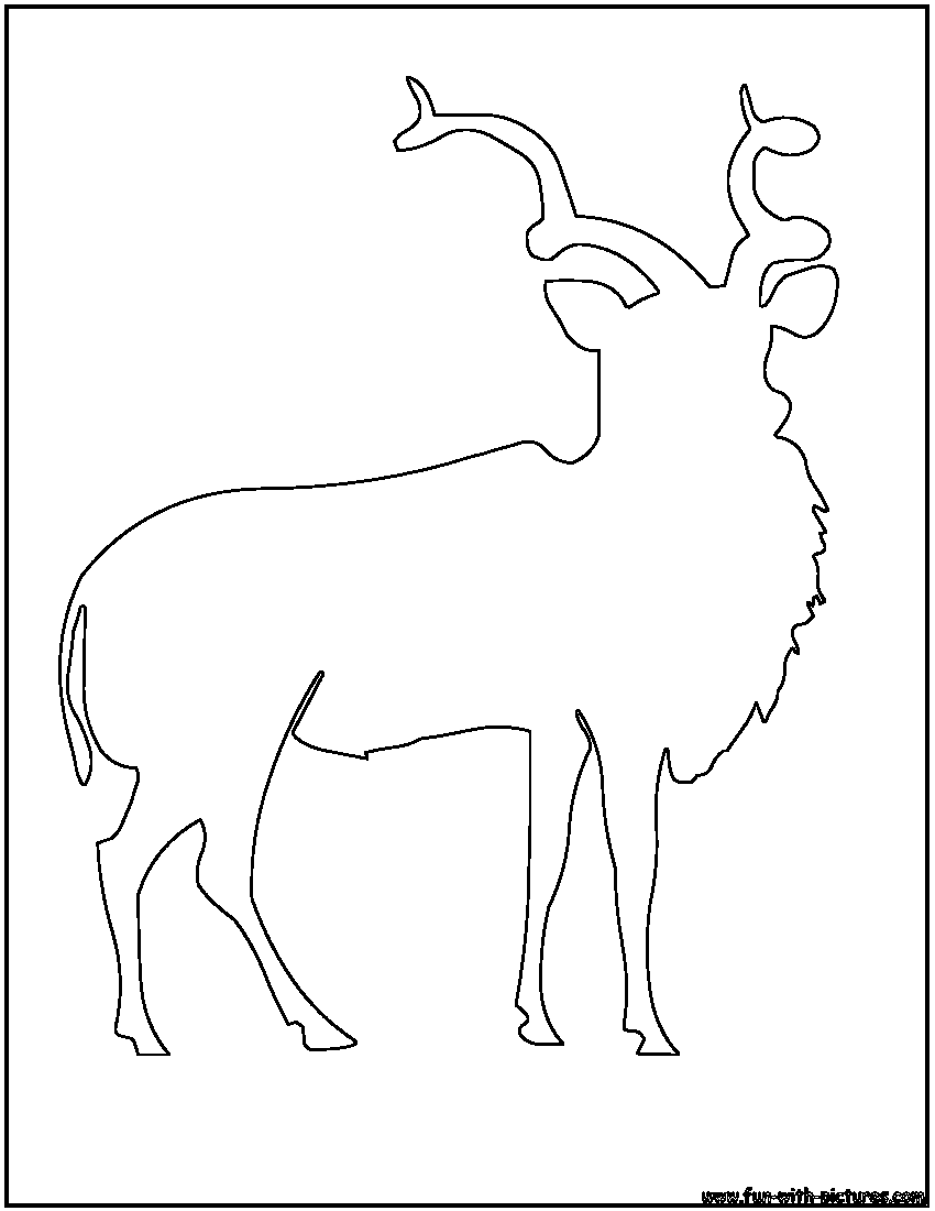 addax antelope outline coloring page - Animal Outlines To Color