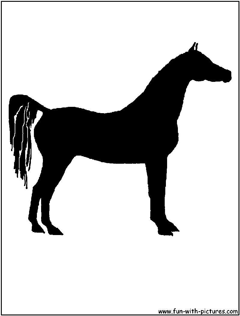 Watch more like Arabian Horse Silhouette