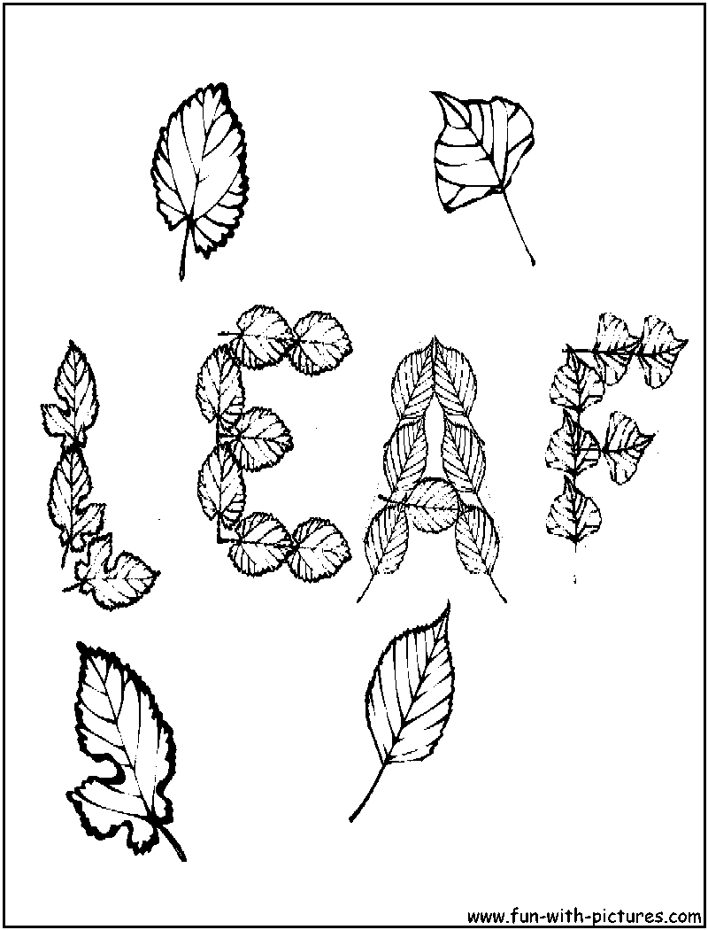 Autumn Leaves Coloring Page