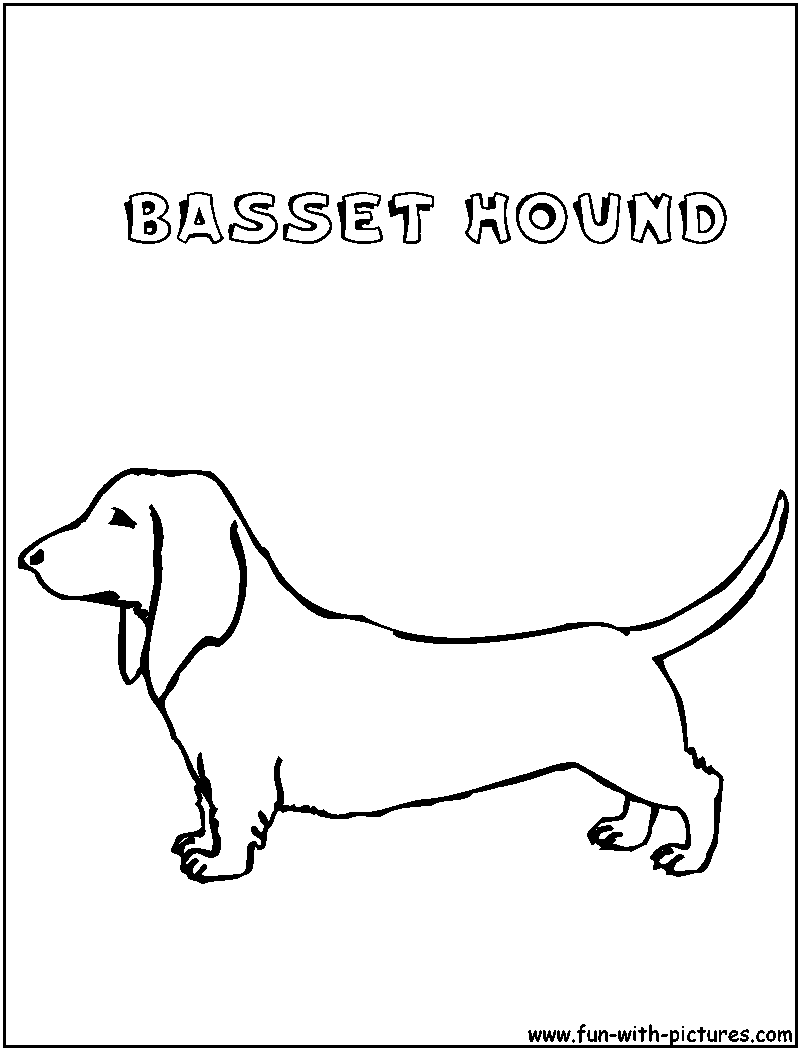 bassett coloring pages - photo#4