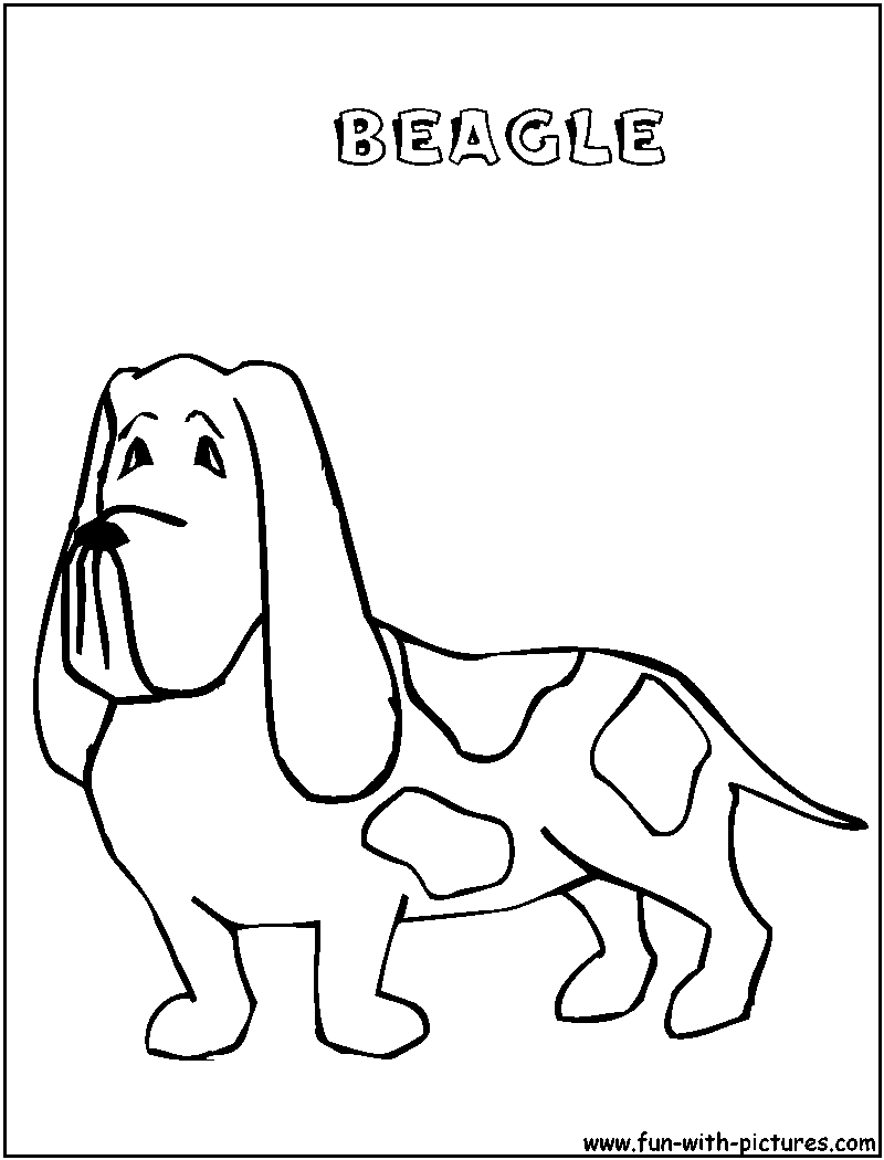 cute beagle dog coloring pages - photo#8