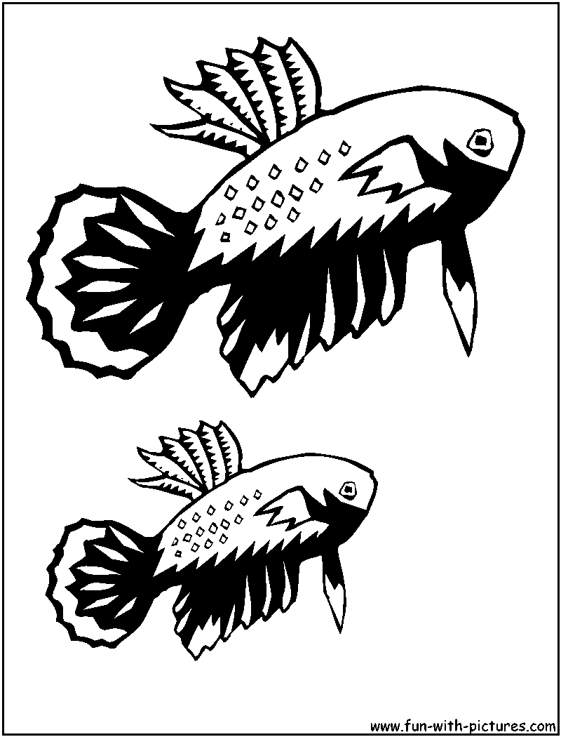 Betta coloring page for Betta fish coloring pages