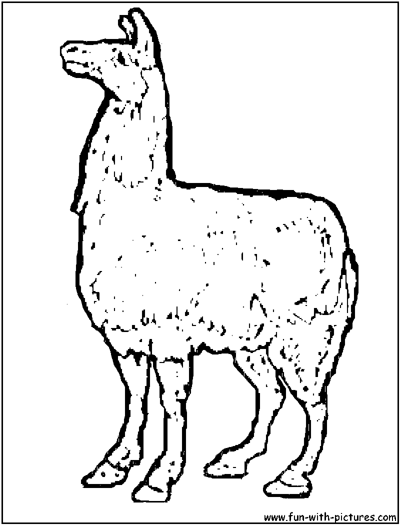 Cartoon Brown Llama Coloring Page
