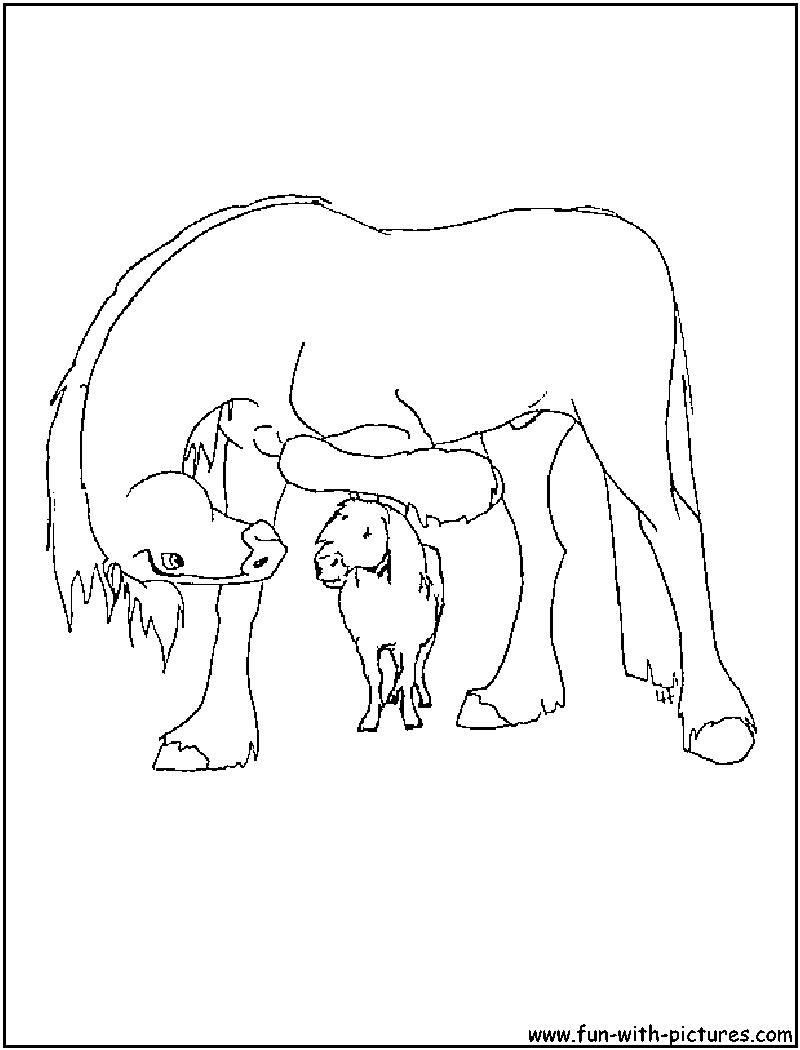 clysdale horse colouring pages Quarter Horse Coloring Pages  Clydesdale Coloring Pages