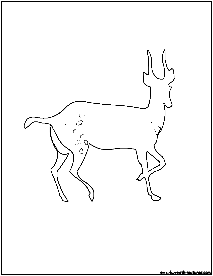 gazelle coloring pages for kids - photo#22