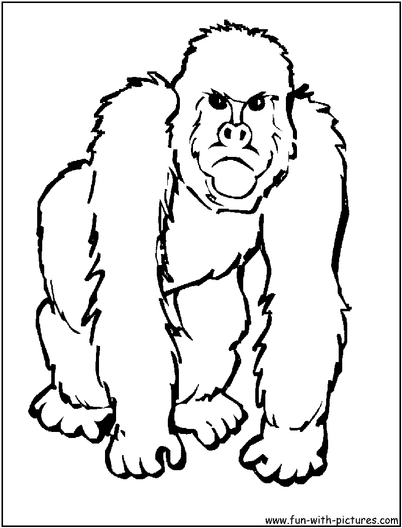 Endangered Wildlife Coloring Pages