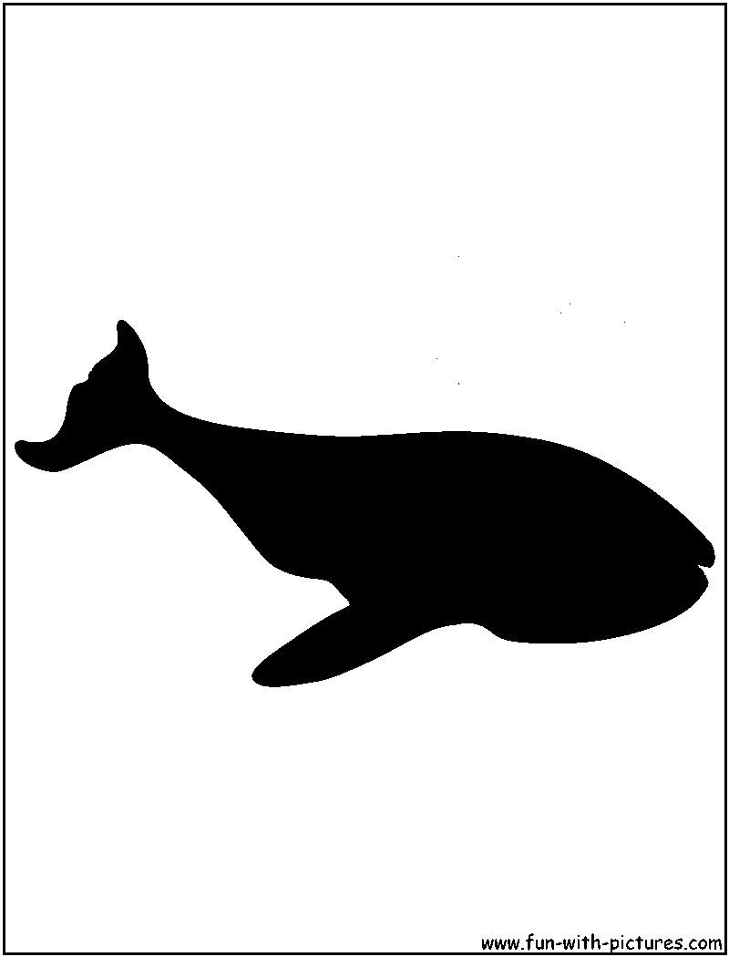 whale silhouette