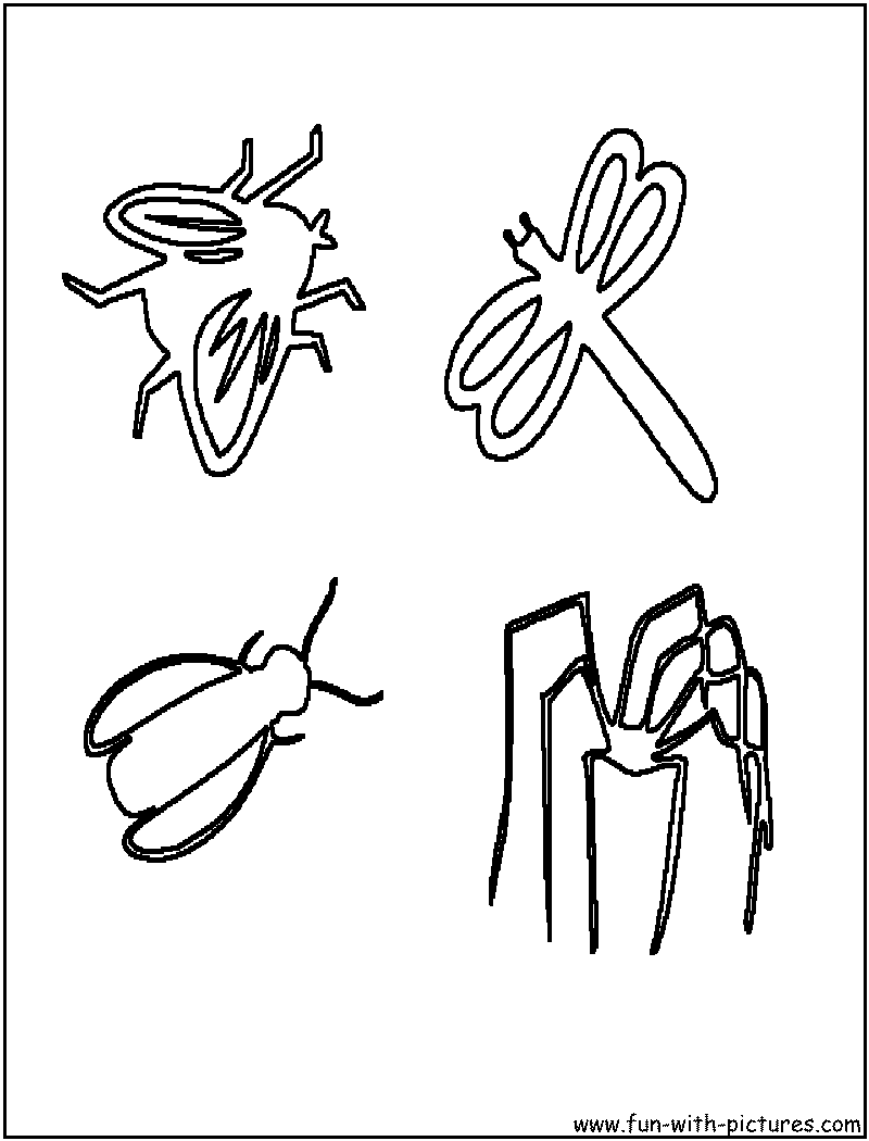 Insects Coloring Pages  Free Printable Colouring Pages for kids