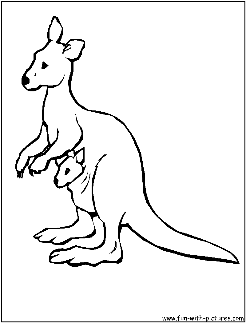 kangroo coloring pages - photo#32