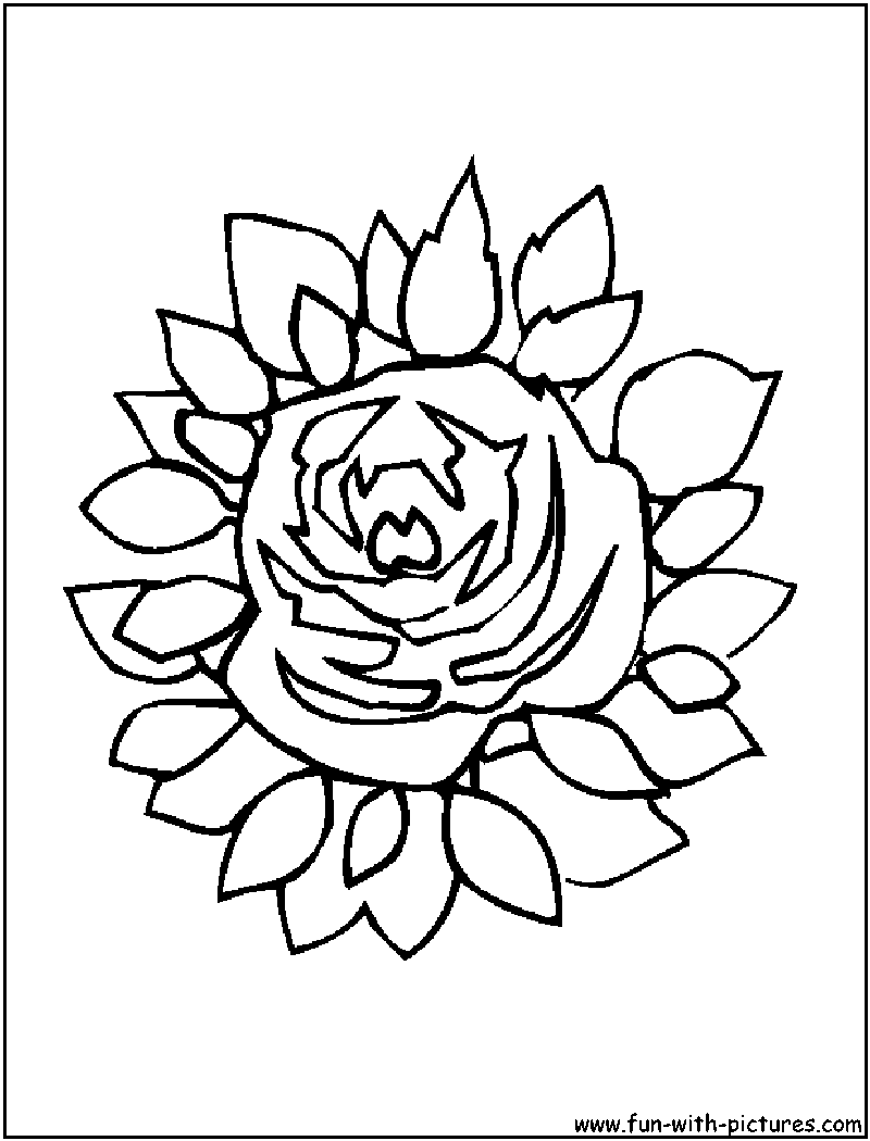 flowers coloring pages free printable colouring pages for kids