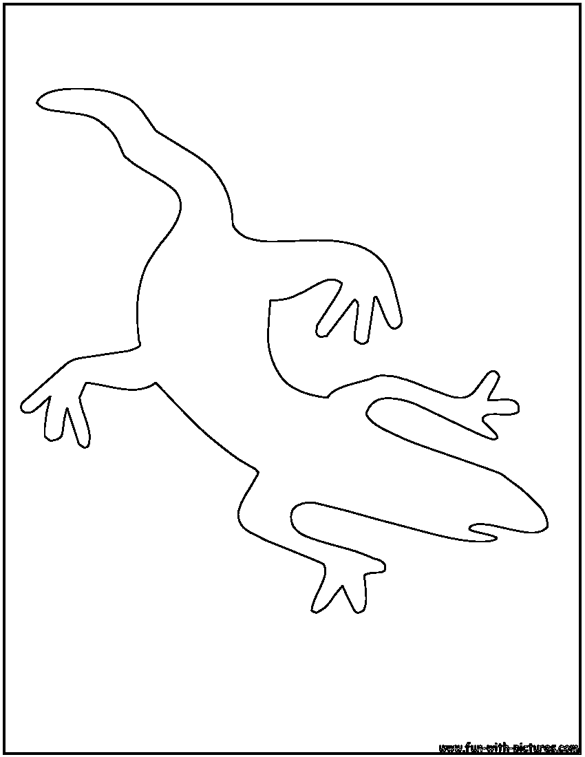 Lizard Outline Coloring Page Outline Coloring Pages