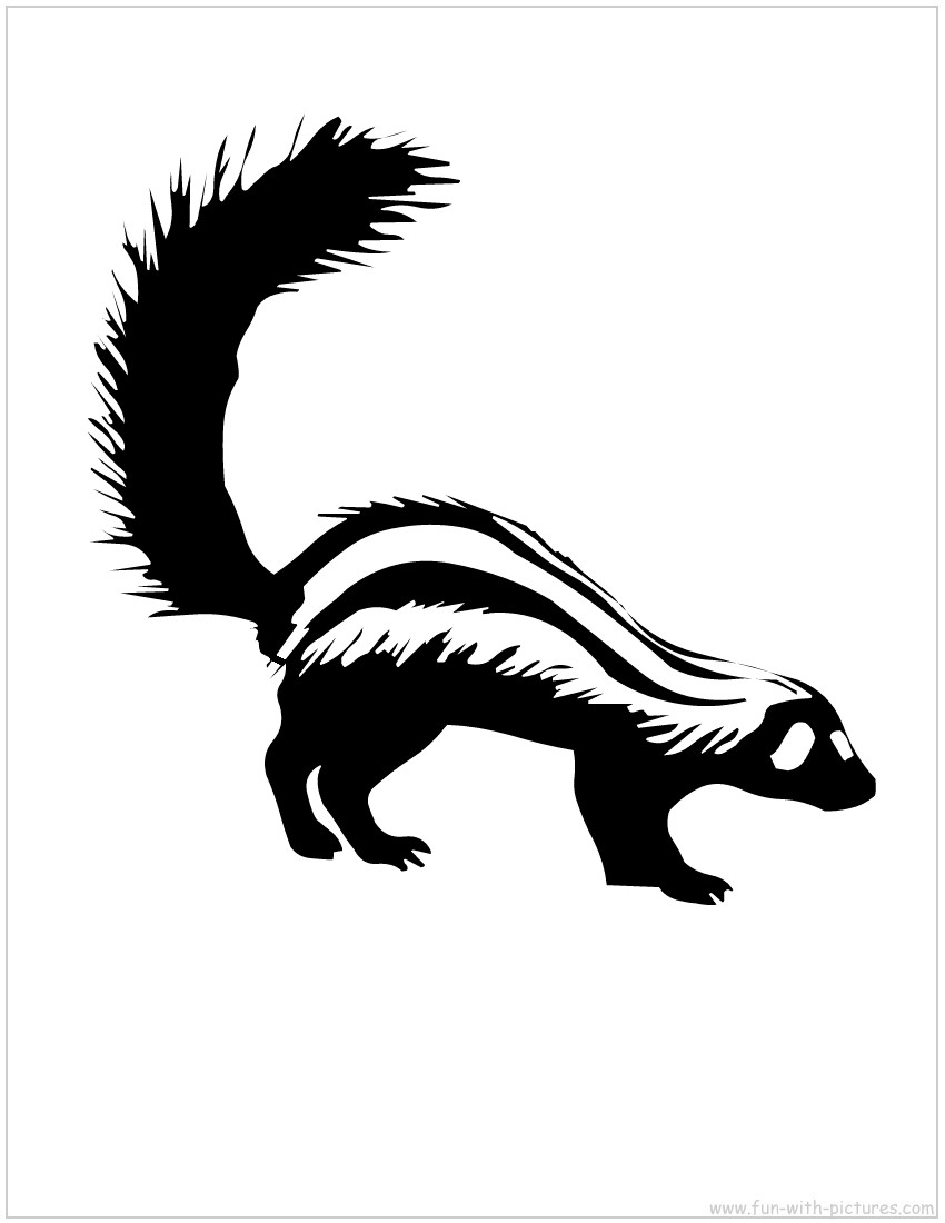 Skunk Drawing  Cartoon http://picsbox.biz/key/draw%20cartoon%20skunk