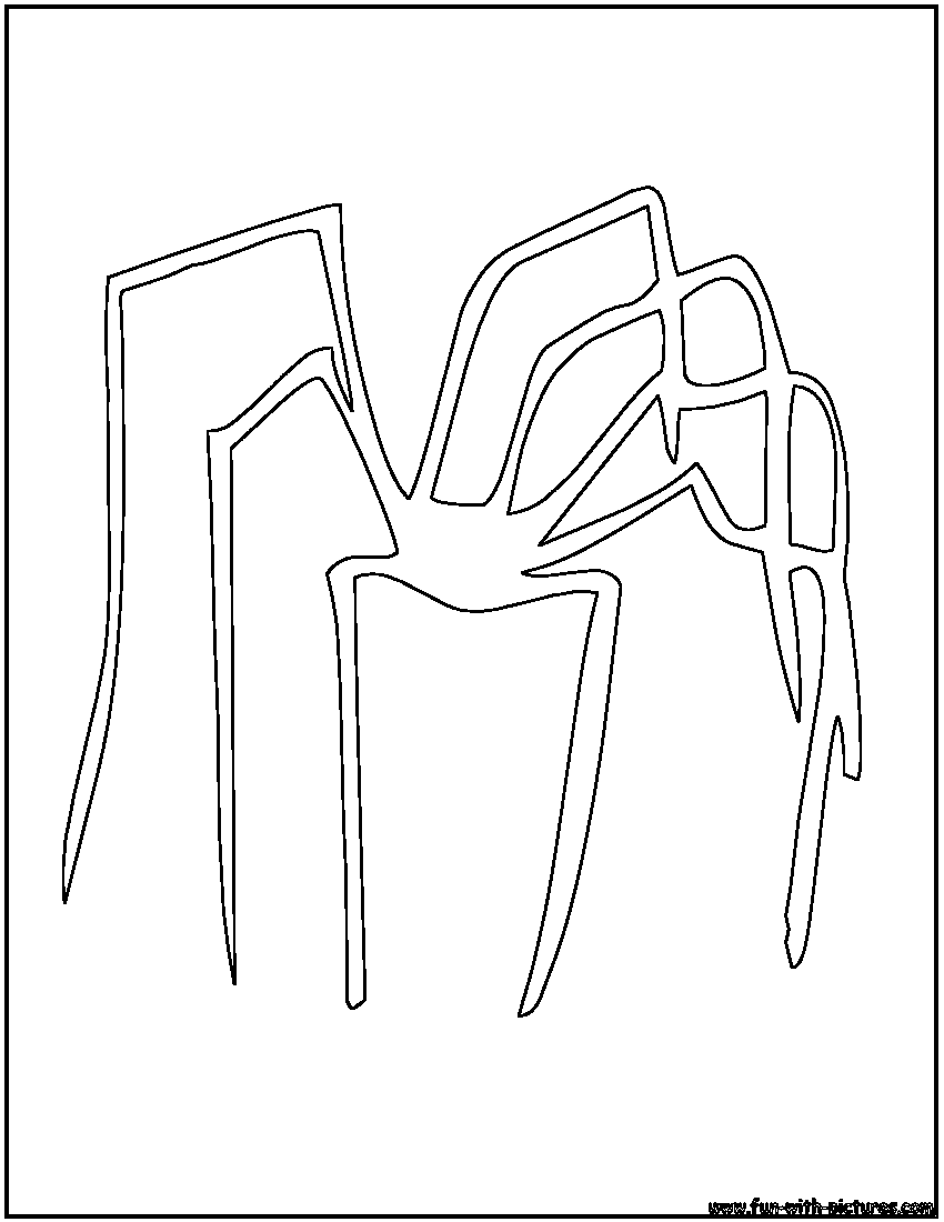spider outlines