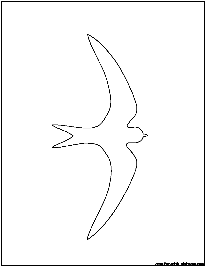 Bird Outlines Coloring Pages Free Printable Colouring Pages for