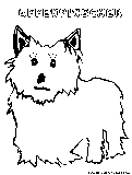 Affenpinscher Coloring Page