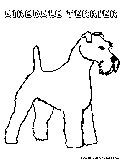 Airedaleterrier Coloring Page