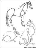 Animal Picture Coloring Page2