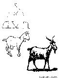 Barnyard Goat Coloring Page
