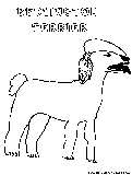 Bedlingtonterrier Coloring Page