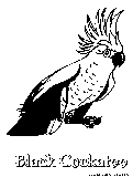 Black Cockatoo Coloring Page