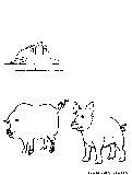 Boar Sow Coloring Page