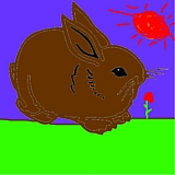 bunnyrabbit1- picture of easter bunny