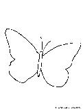 Butterfly Coloring Page1