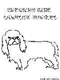 Cavalierkingcharlesspaniel Coloring Page