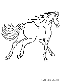 Horse Canter Coloring Page
