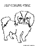 Japanesechin Coloring Page