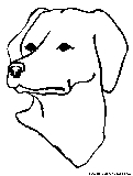 Labface Coloring Page