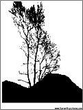 mountain trees silhouette