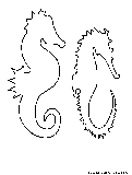 Seahorses Coloring Page1