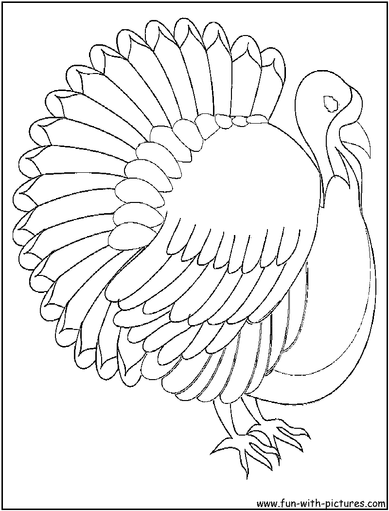 turkey body coloring pages