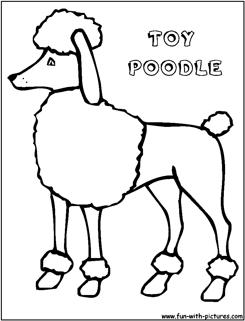 coloring pages of poodle dogs - photo#15