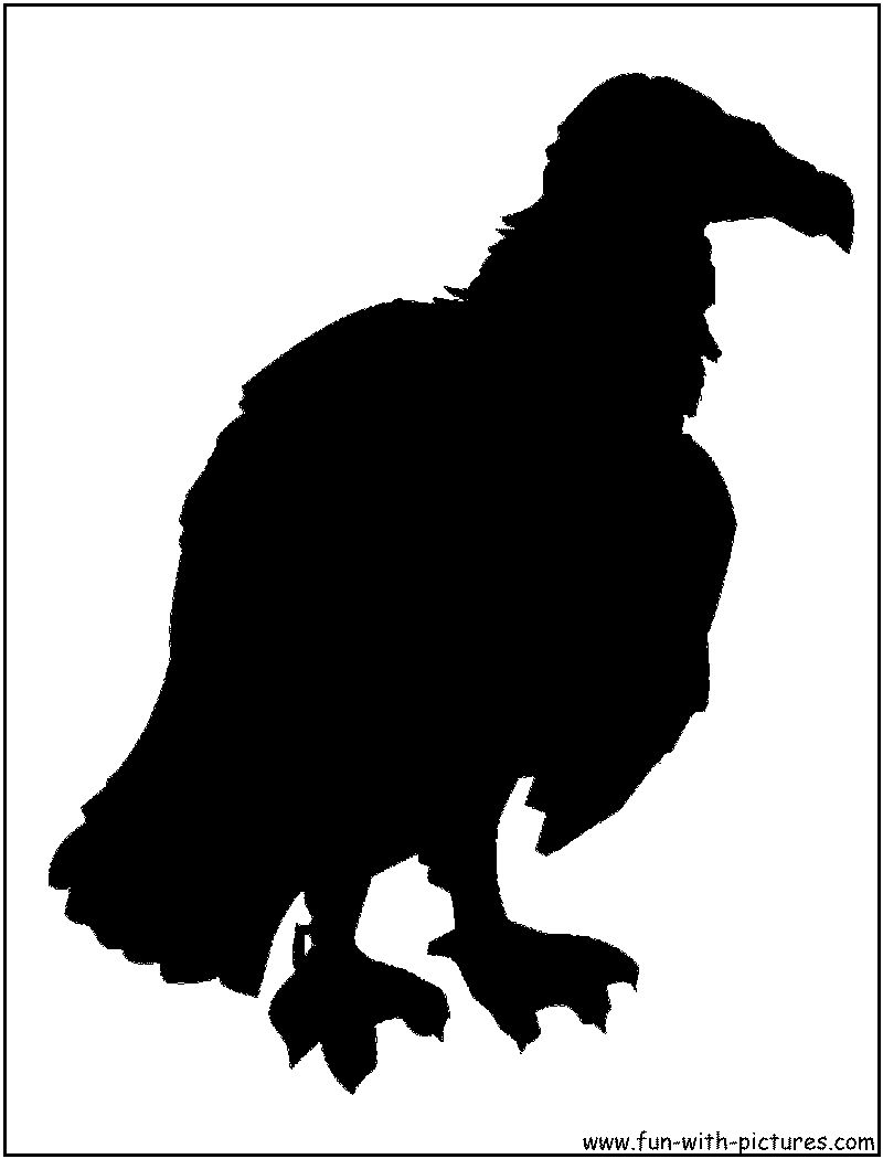 Vulture Coloring Page #5