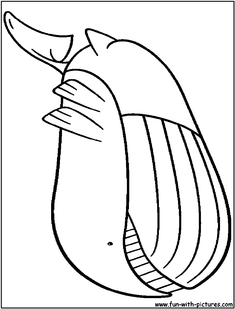 mega wailord coloring pages - photo#10