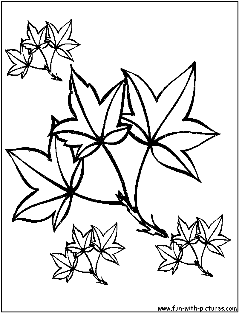Autumn Leaves Coloring Pages Free Printable Colouring