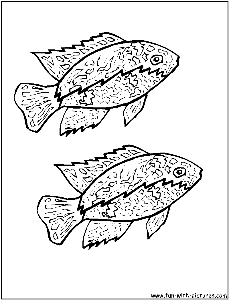 Fish Coloring Pages Free Printable