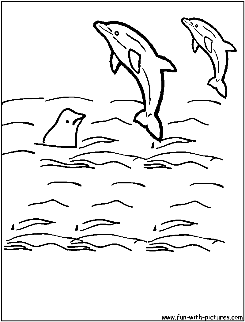 Orca Coloring Pages Mandala – plur.club | 1050x800