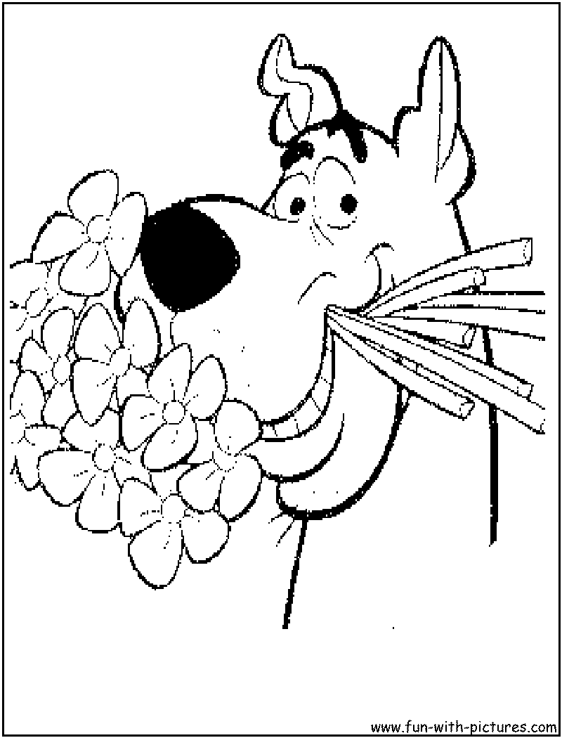 Scooby Doo coloring pages | 1050x800