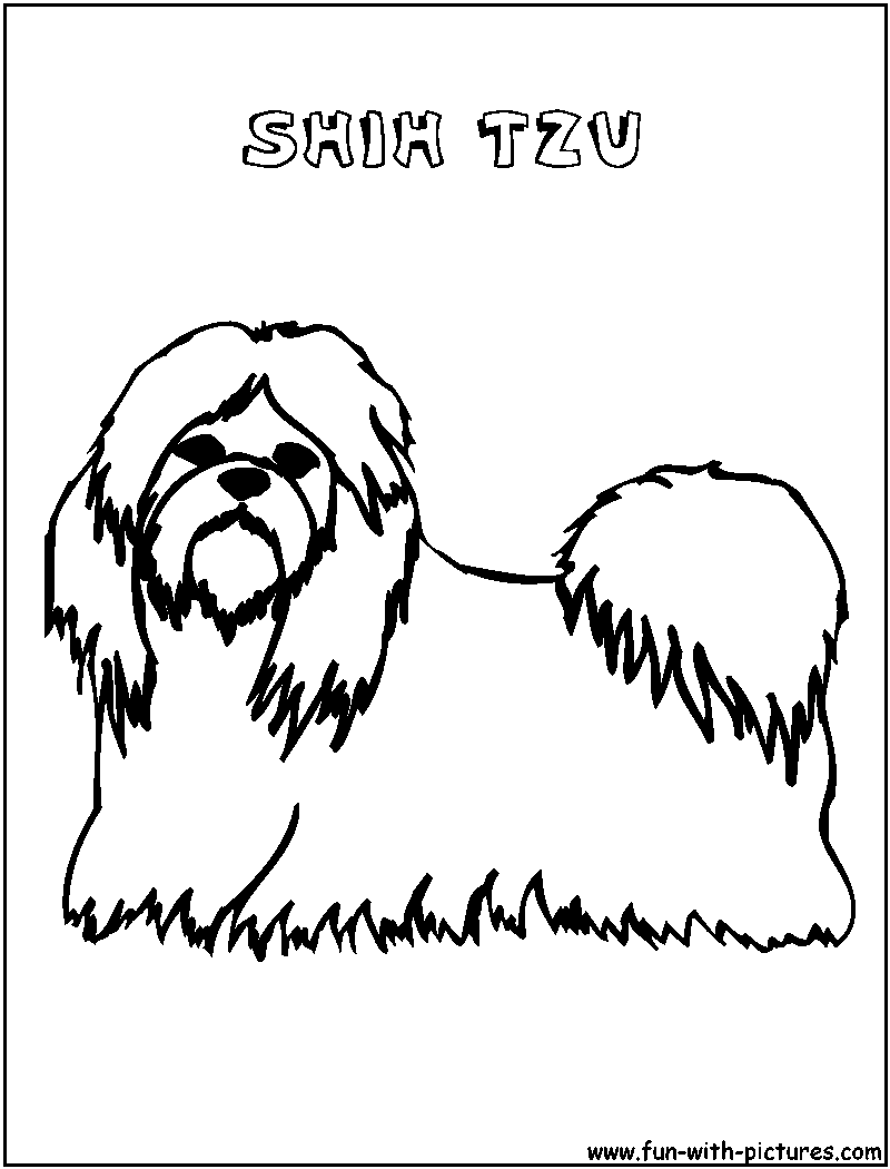 This is a graphic of Epic Shih Tzu Coloring Pages