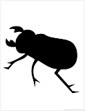 beetle silhouette