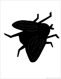 house fly silhouette